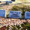 Mildred Stinaff's headstone (center) in Kent has her pilot's wings and license number.