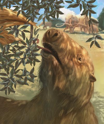 Giant Sloth Ice Age