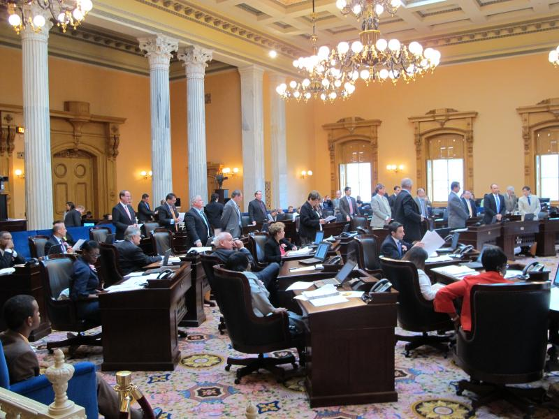 Republicans stand in a vote for on amendment to the State budget June 6.
